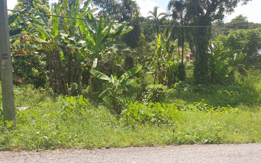 RIO CLARO LOT WITH ALL APPROVALS – FOR SALE